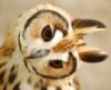 fallconsmate: (owl ears)
