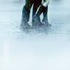 world_order: (Smallville   Rabid Rain)