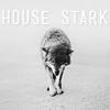 aryaunderfoot: ([Nymeria] House Stark)