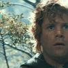 uluithiad: (samwise the searching)