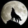 dionysius: (moon)