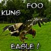 ximeria: (MISCH - eagle kung foo)