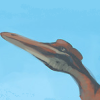 pterosaur: (I shall come to you who hurt me most)