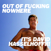hollywdliz: (hasselhoff)