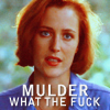 hollywdliz: (xf scully wtf)