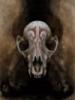 skyllaros: (Skull)