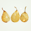 vepres: (bright: stock: pears)