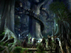 giluial: A picture of the base of one of the trees of Caras Galadhon with many people around it (Default)