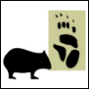 wombat1138: (Default)