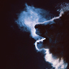 dripping_cherry: (lion) (Default)