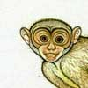 inkmonkey: A small drawing of a monkey. (default, monkey)