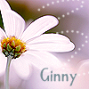 ginny305: (Stock: Name Flower)