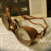 cl0ckw0rkf0x: (steampunk goggles)