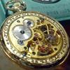 cl0ckw0rkf0x: (steampunk watch)