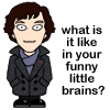 staceyuk: Funny Sherlock icon (Default)