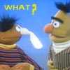 beelikej: (Ernie&Bert IDEK)