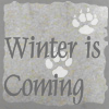 ceilidh: (winter is coming)