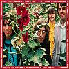 ivybgreenflower: The Beatles (late period), surrounded by green plants and red flowers (Beatles)
