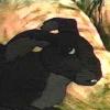 blackavar: (blackavar)