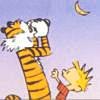 stellawind: (Calvin&Hobbes)