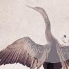 mizz_destiny: (default: wings)
