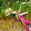 jaxadorawho: (Seasonal ☆ Spring ~ bike with flowers)