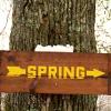oliviacirce: (spring//jai)