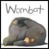curiouswombat: (saner emu)
