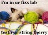 luscious_purple: i'm in ur fizx lab, testin ur string therry (string therry)