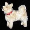 eldriwolf: Steiff space dog (Lika)