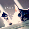 arinelle: (Rawr kitty)