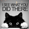 arinelle: (Black Kitty; I see what you did there)