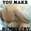 rightangles: (you make bunny cry)
