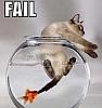 kuangning: (fail)