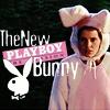 fangfaceandrea: (Anya Bunny)