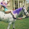 monsterqueen: Lady Gaga on a pokla-dotted horse (Gaga on a Horsie)