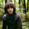 Bran Stark | the wolf dreamer