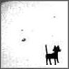 vomit_bunny: (Cat)
