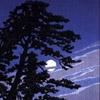 silere: (moon)