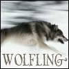 wolfling: (winterwolf)