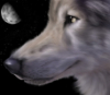 bellethiel_lindariel: (Wolf)
