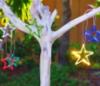 startree45: fused glass (Star tree 2)