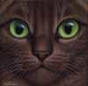 dona_anna: (cat)