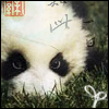 keilexandra: Adorable panda with various Chinese overlays. (panda)