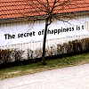 fearless: The secret to happiness is... (The Secret To Happiness Is...)