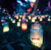 john: Various candles, in multicoloured jars, under trees in the evening (::evening)