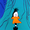 zen_monk: Shocked Daffy (Daffy Shocked)