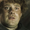 uluithiad: (samwise the struggling)