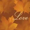 velvet_diamonds: (Autumn Love)