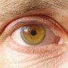 davidcook: (my eye)